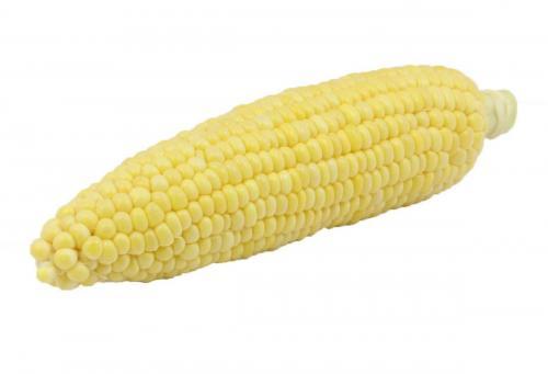Corn, Yellow