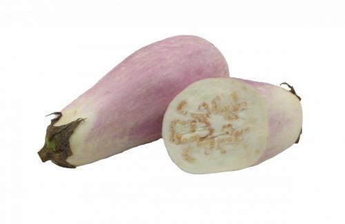 Eggplant, Variety 1