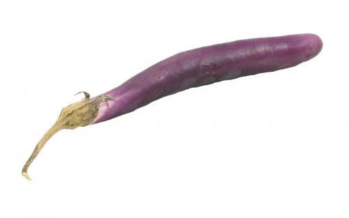 Eggplant, Variety 3