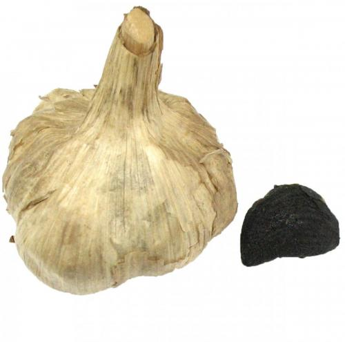 Garlic, Black