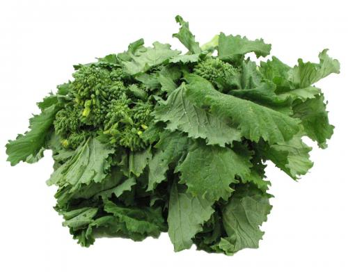 Greens, Broccoli, Rabe (Rapini)