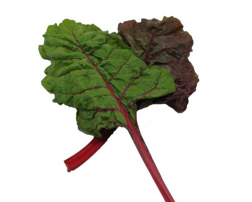 Greens, Red Chard 1