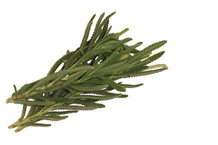 Herbs, Lavendar