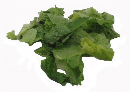 Lettuce, Romaine Chopped