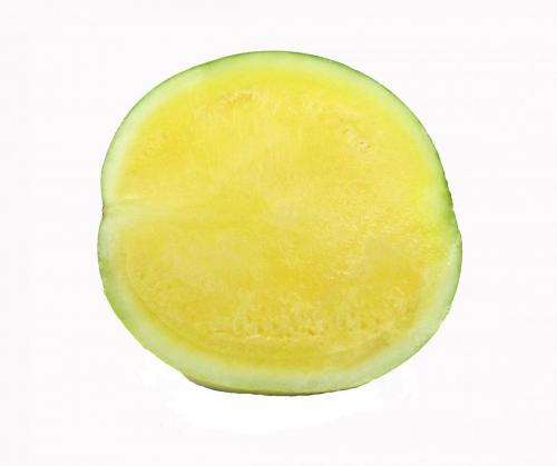 Melon, Watermelon, Yellow