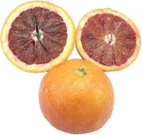 Orange, Blood