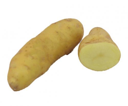 Potato, Fingerling, Yellow