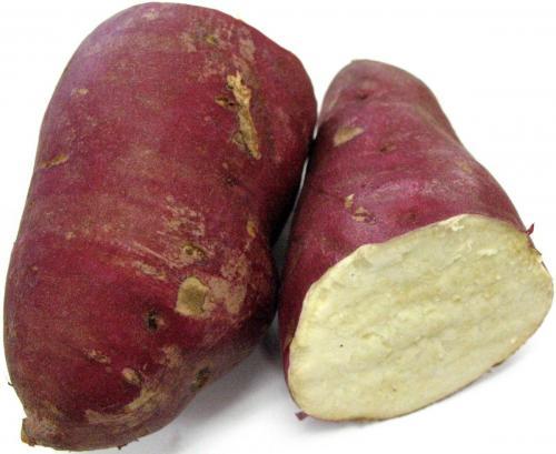Potato, Oriental Sweet
