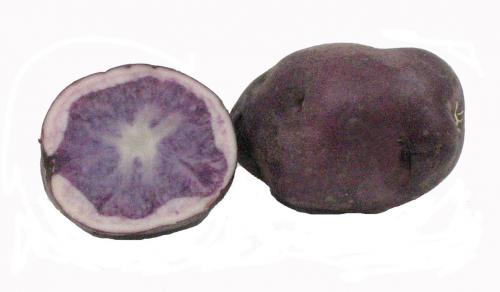 Potato, Purple Flesh