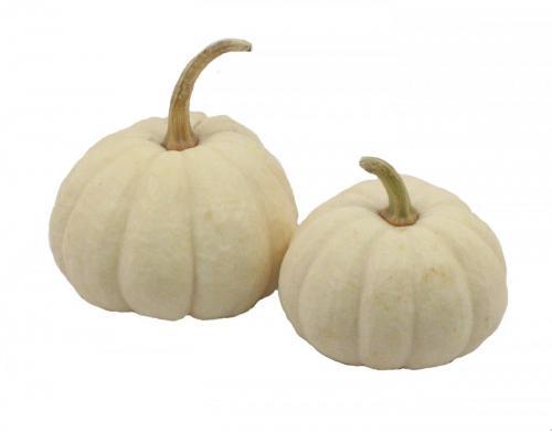 Pumpkin, Baby Boos, Double