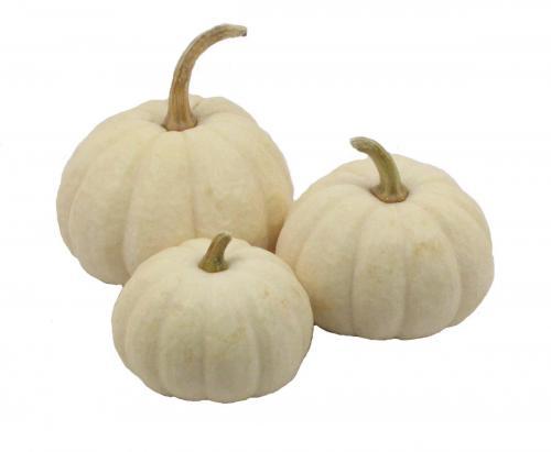 Pumpkin, Baby Boos, Triple