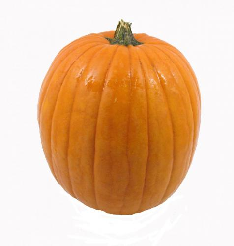 Pumpkin, Medium