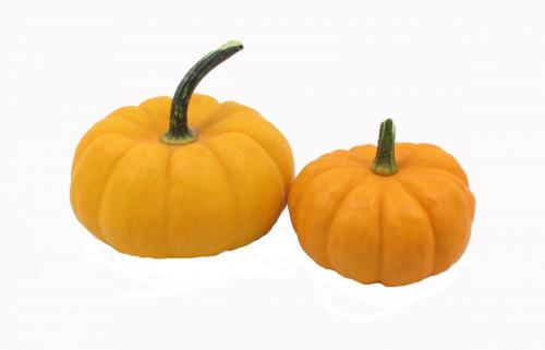 Pumpkin, Miniature, Double
