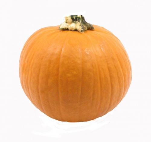 Pumpkin, Pie