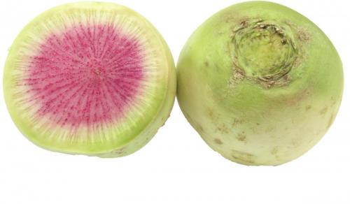 Radish, Watermelon