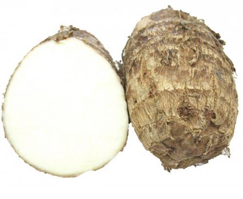 Roots, Taro Root