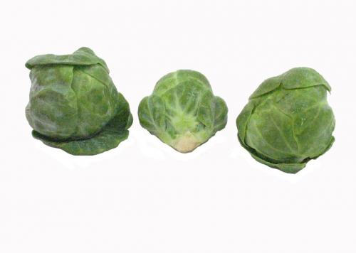Sprouts, Brussel