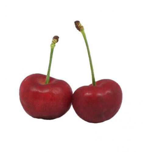 Stonefruit, Cherry