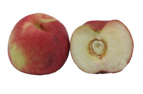 Stonefruit, Peach, White