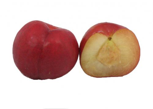 Stonefruit, Plum, Red