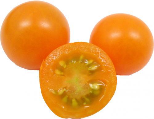 Tomato, Cherry Yellow