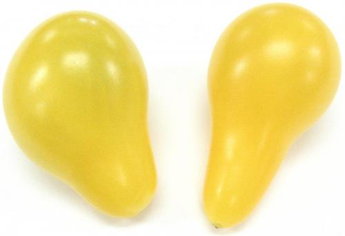Tomato, Teardrop, Yellow