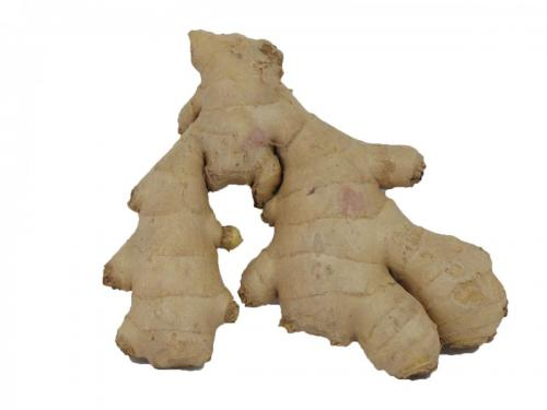 Tropical, Ginger Root
